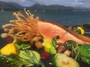 Salmon & Garden Veg