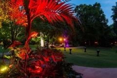 botanic-gardens-lighting