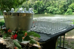 barron-river-luncheon-bar-and-riverjpg