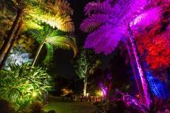 smbotanic gardens trees